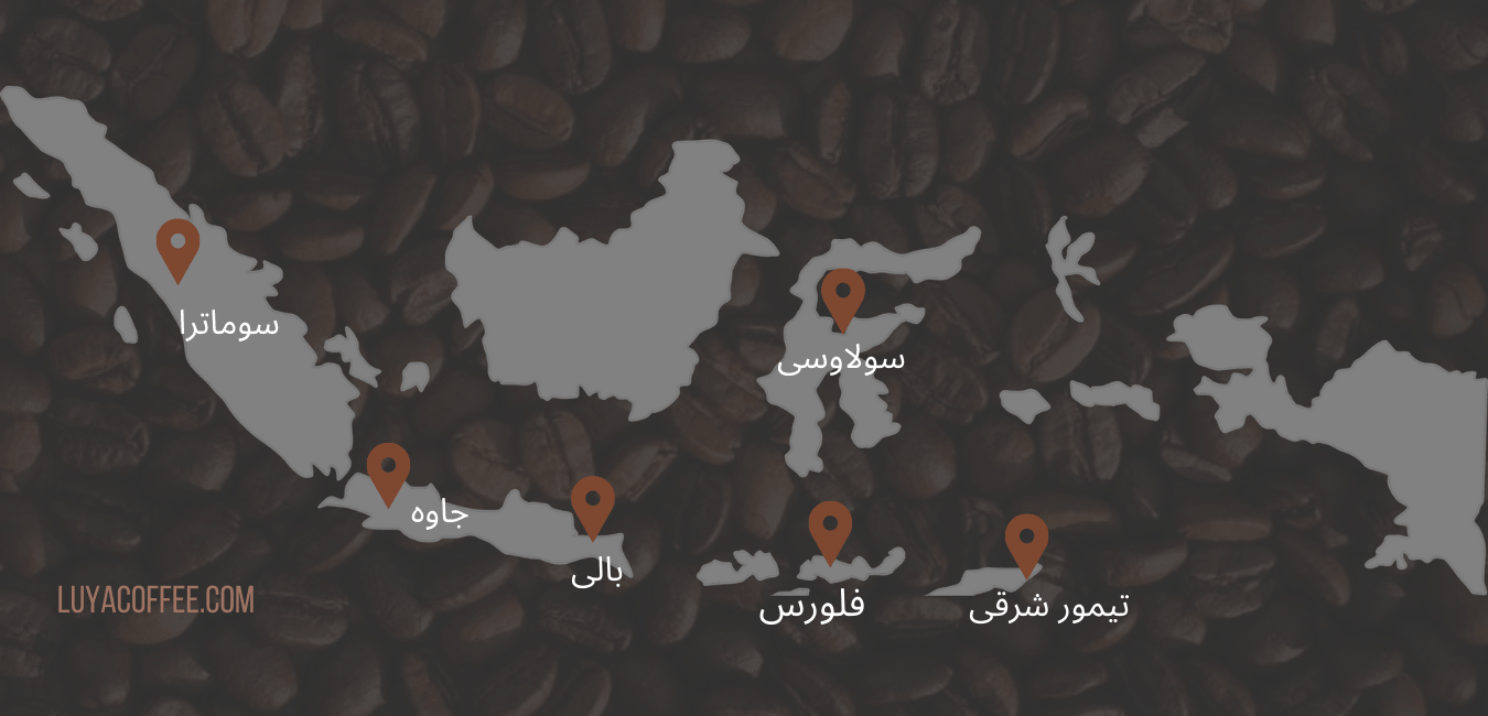 قهوه اندونزی نقشه اندونزی