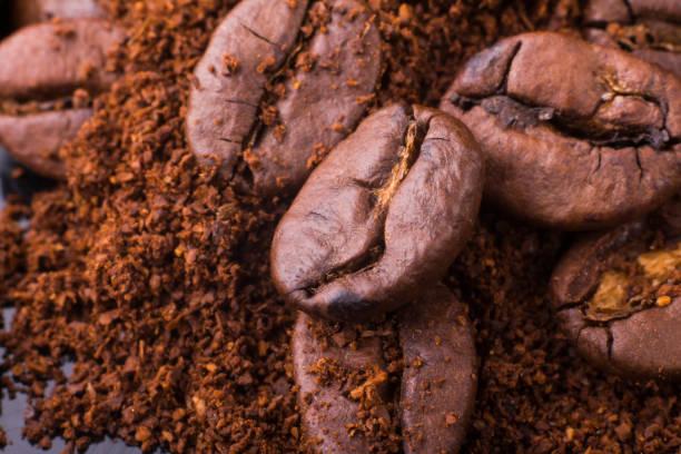 پخش قهوه عمده