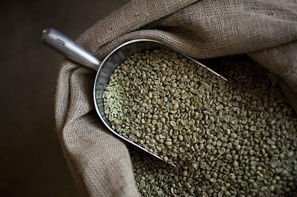 خرید قهوه فله سبز