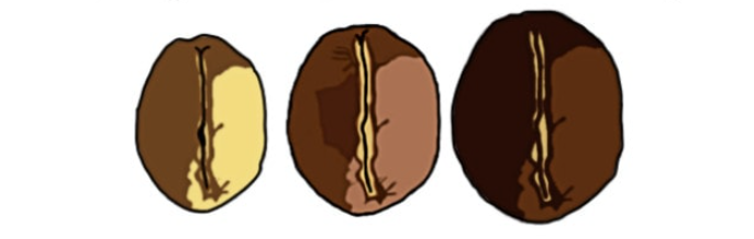 تاثیر نوع رست در میزان کافئین قوی ترین قهوه